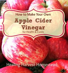How to Make Your Own Raw Apple Cider Vinegar (Delicious & Healthy!) from Scraps!