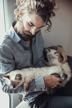 Curls. Beard. Cats. Dream man? Hot guys and animals ... ohhhh dear.