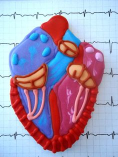 Anatomical Heart Cookie