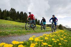 Mountainbike Touren im Schwarzwald | MTB Touren Finder E Mtb, Bicycle, Seen, Red Houses, Bike, Bicycle Kick, Trial Bike, Bicycles