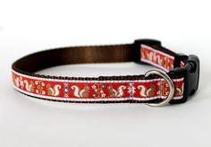 Pet Squirrel Dog Collar / Adjustable Dog Collar / by daydogdesigns