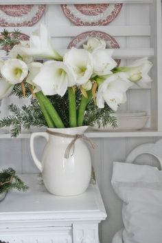 Christmas - white pitcher filled with a bouquet of white amaryllis and evergreens
