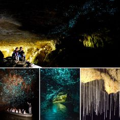 Be amazed by the thousands of #magical glowworms above, as you glide silently by boat in the world of famous #Waitomo #Glowworm #Caves, New Zealand.   #waitomoglowwormcaves #waitomocaves #glowwormcaves #newzealand #nz #nature #adventure #nzmustdo #travel