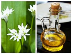 Natural Remedies, Health And Wellness, Herbalism, Diy And Crafts, Alcoholic Drinks, Healthy, Glass, Nature, Food