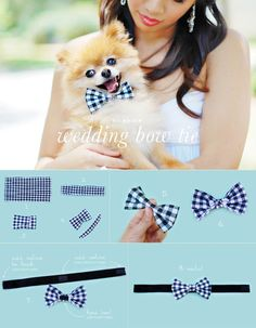 Bow tie for dogs, omg, my best friend would LOVE this