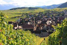 Riquewihr vue depuis le Schoenenburg ( Photo Hugel )
