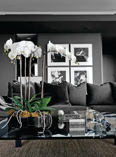 Elegant - love the steel grey walls and sofa
