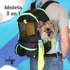 Maleta 3 en 1 color negra. En Pre-venta entra a nuestra tienda virtual 𝓌𝓌𝓌.𝓂𝑒𝓁𝓁𝑜𝓌𝒻𝑜𝓇𝓅𝑒𝓉𝓈.𝒸𝑜𝓂 o escríbenos a través de Whatssap 3017873600 North Face Backpack, Color Negra, The North Face, Backpacks, Twitter, Photos, Bags, Store, Pets