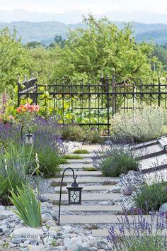 Bauerngarten: Anlegen, Gestalten und Bepflanzen | Gardens