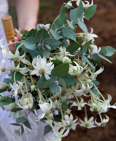 blog10 c2bb jennifer stocks photography the blog Amazing Australian Wedding Bouquets