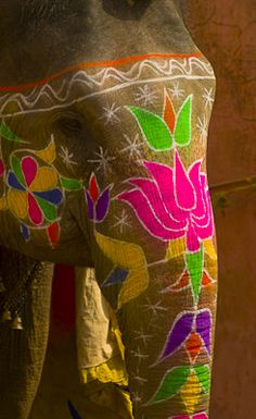 Painted Elephants- Rajasthan, India