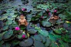 Lotus children  (via zenandgenki Pics of the Week 37)
