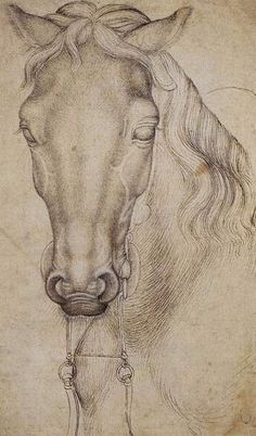 Pisanello; Study of the Head of a Horse, 1437