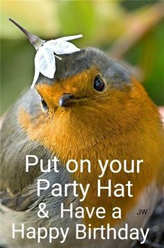 Put on Your Party Hat & Have a Happy Birthday