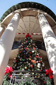 Christmas in Savannah!