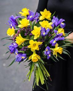 Două dintre cele mai reprezentative flori de primăvară sunt narcisele și irișii, iar combinația dintre cele două este absolut fermecătoare. Comandă acum acest buchet în culori contrastante și dăruiește-l unei persoane dragi căreia vrei să-i aduci un plus de energie și prospețime. Air Plant Terrarium, Plant Needs, Air Plants, Peace And Love, Magnolia, Gift Tags, Color Blocking, Iris, Greenery