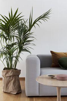 interiør - interior - natur - estetikk