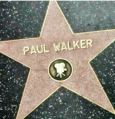 Paul Walker Walk of Fame Paul Walker Tribute, Rip Paul Walker, Cody Walker, Fast And Furious Cast, The Furious, Hollywood Walk Of Fame, Hollywood Stars, Furious Movie, Ride Or Die