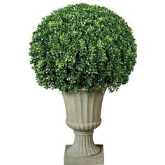 Improvements Boxwood Ball Artificial Topiary (£130) ❤ liked on Polyvore featuring home, home decor, floral decor, artificial bush, artificial shrub, artificial topiary, faux topiary, porch trees, trees decor fake and artificial trees