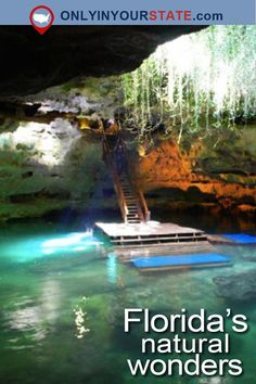 Travel Florida Natural Wonders Sight Seeing Explore Outdoor Hiking In Florida, Florida Vacation, Florida Travel, New Travel, Solo Travel, Vacation Spots, Travel Usa, Shopping Travel, Usa Pictures