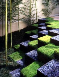 The ultimate display of geometrics is seen here in this checkerboard design by the architect Ron Herman. The inspiration came from moss and stone Zen temple gardens in Kyoto, Japan. The grid layout of cubes is surfaced with smooth river pebbles and Helxine (Soleirolia soleirolii), while a vertical accent is provided by slim bamboo.