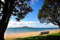 Narrow Neck Beach, North Shore of Auckland, New Zealand. Places To Travel, Places To Go, New Zealand Beach, Beach Look, North Shore, Auckland, Beautiful Places, Island, Vacation