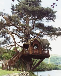 Tree House! How cool it would be to live in this!!!!