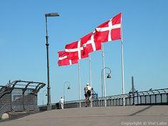 Danish flags at Copenhagen Harbour