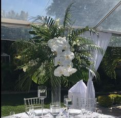Tropical Centerpieces, Wedding Reception Centerpieces, Orchids, Tropical Wedding Centerpieces, Orchid