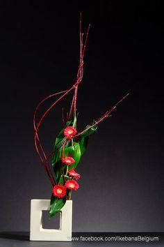 Flowers for love ~ Floral Art: Ilse Beunen;   Photography: Ben Huybrechts; Material: Cornus, Gerbera and aspidistraIkebana