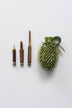Harmless Weapons Made of Plants by Sonia Rentsch weapons sculpture plants illustration guns