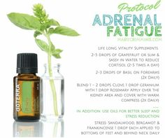 Adrenal Fatigue protocol with DoTerra essential oils Essential Oil Uses, Young Living Essential Oils, Essential Oil Diffuser, Fadiga Adrenal, Adrenal Health, Adrenal Glands, Adrenal Fatigue Treatment, Fatigue Causes, Doterra Essential Oils
