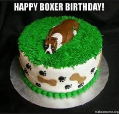 Dog Birthday Cake Pictures Boxer In Grass. Make with a kangaroo instead of dog Sweet Birthday Cake, Birthday Cake Pictures, Themed Birthday Cakes, Dog Birthday, Themed Cakes, Birthday Ideas, Boxer And Baby, Boxer Love, Hello Kitty Cake Design