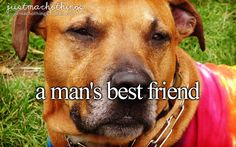 A Man's Best Friend | #Dog photo by: Cary Bass