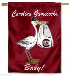 South Carolina Gamecock Stork Baby Flag So Cute!!!!!