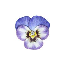 Antique: Enamel Pansy Brooch with A European Cut Diamond Center #PansyBrooch #EnamelFlower #AntiqueJewelry #sugaretcie
