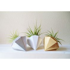 Natural Gem Planter - Dot & Bo