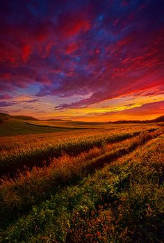 """https://flic.kr/p/pgodVg 