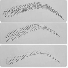 Eyebrow hair strokes with new finish ink....practice makes perfect ...