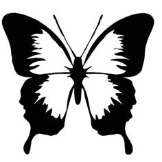 Butterfly Vinyl Wall Sticker Decal - Overstock™ Shopping - The Best Prices on Vinyl Wall Art