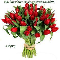 Στείλε ευχές γιορτής και γενεθλίων στα αγαπημένα σας προσωπα.:) Simon And Garfunkel, Floral Arrangements, Christmas Wreaths, Floral Wreath, Holiday Decor, Flowers, Plants, Floral Crown, Flower Arrangement