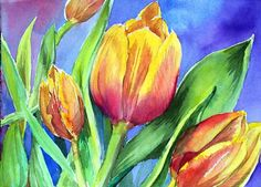 tulips pictures | tulips watercolor 14 x 10 painting size