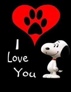 Love from snoopy Snoopy Cartoon, Peanuts Cartoon, Peanuts Snoopy, Love You Gif, Love You Images, My Love, Meu Amigo Charlie Brown, Charlie Brown And Snoopy, Snoopy Images
