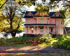 Pink on the Hill