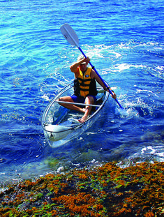 Glass bottom kayak in Key West - what a clever idea.  www.Clearlyuniquecharters.com