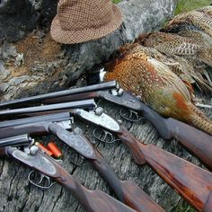 This is the official page of Gentleman Bobwhite, dedicated to the outdoor lifestyle and the pleasures of pursuing the gentleman of game birds: the bobwhite quail. Grouse Hunting, Deer Hunting Tips, Waterfowl Hunting, Pheasant Hunting, Hunting Rifles, Duck Hunting, Hunting Pictures, Fish Camp, Outdoor Life