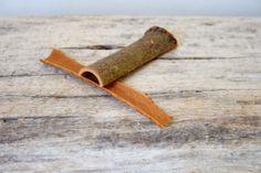 Hämmentäjä: Possutagine, Indian cinnamon sticks with bark give flavor to pork tagine.