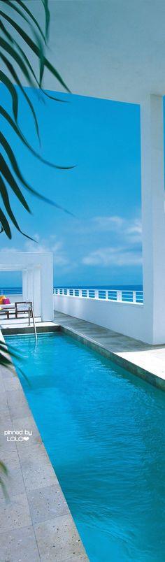 Shore Club Miami   LOLO❤︎
