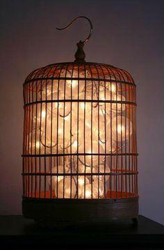 Bulbs in a birdcage