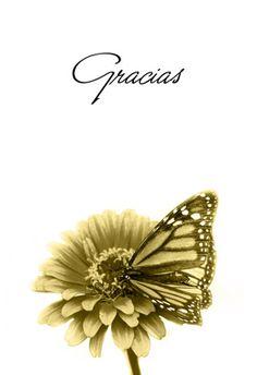 Tarjeta  de agradecimiento para imprimir - Gracias Mariposa